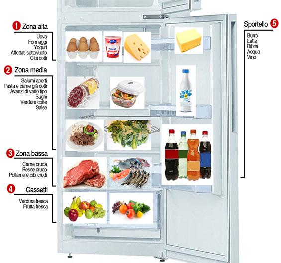 articoli Conservazione alimenti in frigorifero Dott.ssa Elettra Terzani Nutrizionista