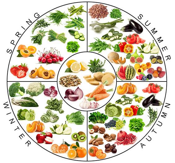 Stagionalit di frutta e verdura elettra terzani - Colorare le pagine di verdure ...