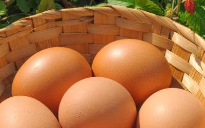 Sostituire le uova nelle ricette